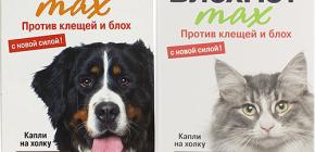 Bermakna Blohnet untuk kucing dan anjing: ulasan dan arahan untuk digunakan