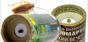 Bom asap insektisida untuk membunuh lipas di apartmen