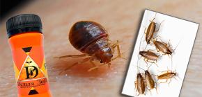 Ubat untuk bedbugs dan kecoak Zon Delta: keterangan dan ulasan