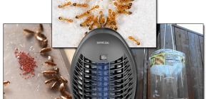 Semak perangkap berkesan untuk terbang dan merangkak serangga