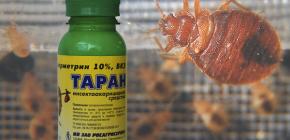 Ubat untuk bed bugs Ram