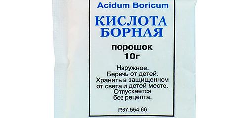 Penggunaan asid borik terhadap lipas